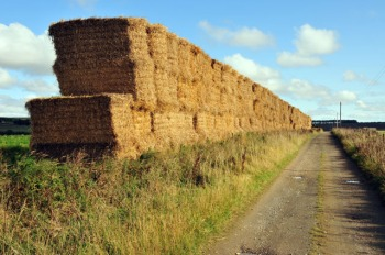 Photo by Greg Morss (Giant Haystacks (Greg Morss) / CC BY-SA 2.0)